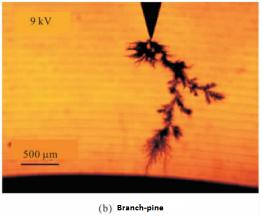 Branchpine at 9kV